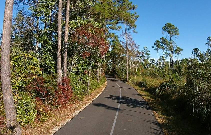 Cotton Bayou Trail section of the Gulf State Park's Hugh S. Branyon Backcountry Trail