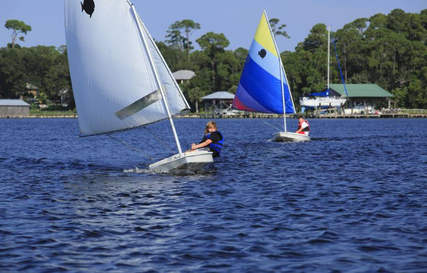 Sunfish Sailboat Race