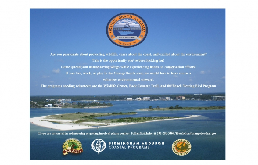 Volunteers sought for Orange Beach Wildlife Center, Backcountry Trail and Beach Nesting Bird Program