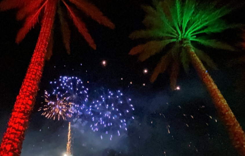 Fireworks in the sky at The Wharf in Orange Beach with palm tree in the forefront - one splashed in red light