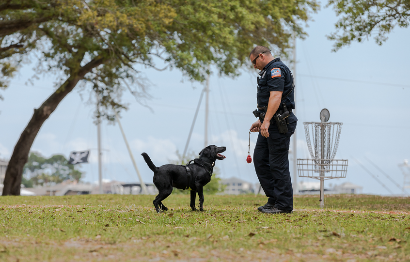 Orange Beach Police Officer Holland and K9 Sadie