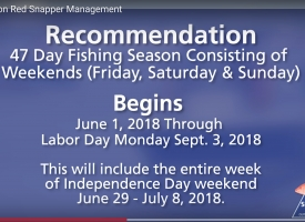 2018 Update on Red Snapper Management