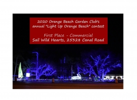 2020 Commercial Winner Light Up OB - Sail Wild Hearts