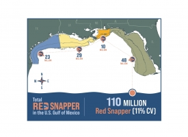 The Great Red Snapper Count Report announced