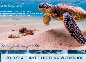 Flyer invite with image of a sea turtle swimming underwater in crystal clear water for the 2019 Sea Turtle Lighting Workshop